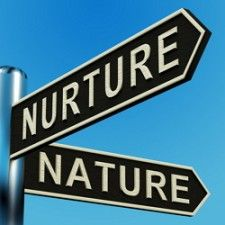 Great Resources for a Nature Vs  Nurture Essay Debate SlideShare