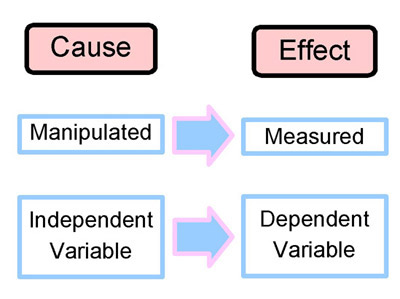 a relationship diagram of the independent and dependent variables Both terms, dependent and independent variables, are related with each other in fact, dependent variables depend upon independent variables as independent variables are presumed to the independent variables or experimental variables can be changed according to requirement.