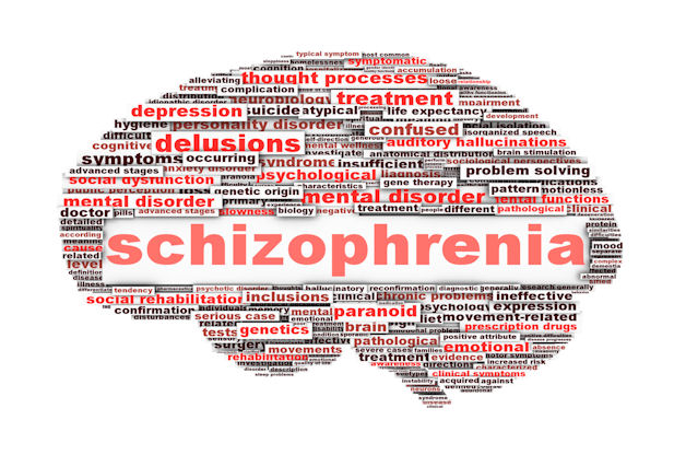 essay schzophrenia Read this psychology essay and over 88,000 other research documents schizophrenia psychosocial disorder is a mental illness caused or influenced by life experiences.